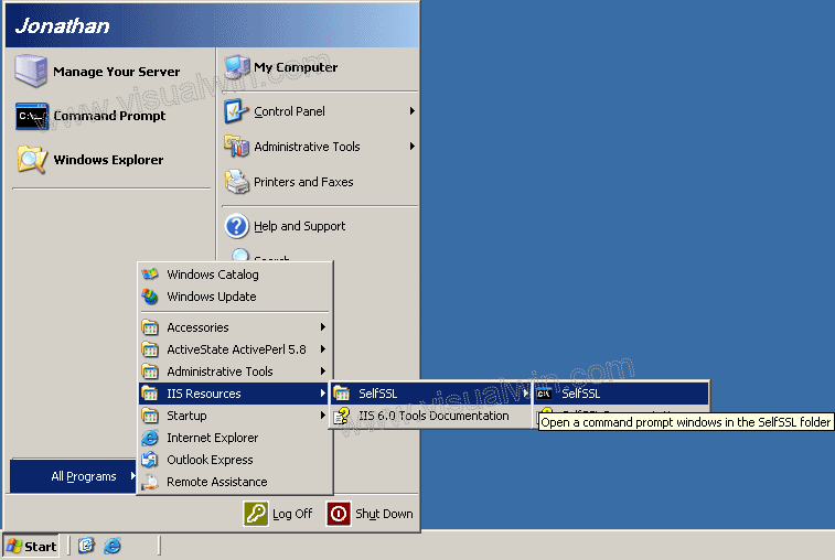 Setting up SSL with a SelfSSL certificate on Windows Server 2003